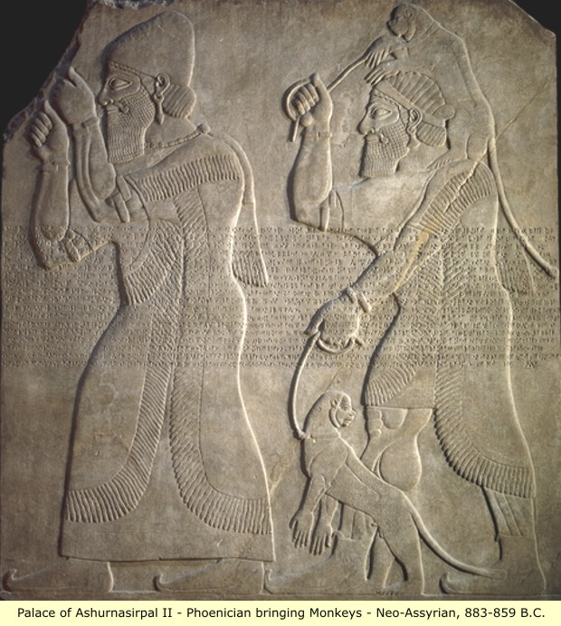 the history of phoenicians Phoenicians was an ancient civilization in canaan which covered most of the  western, coastal part of the fertile crescentseveral major.