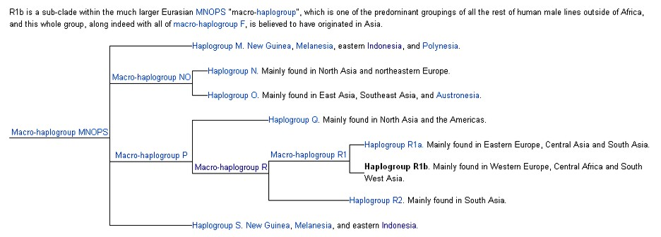Haplogroup R - Supposedly The White peoples Genetics